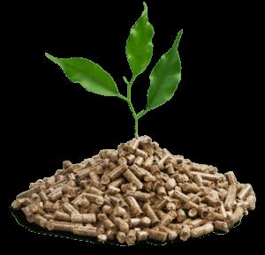 granulés de bois écologique